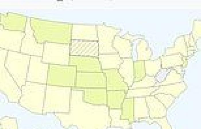 Indian 'Delta' variant turns Missouri into newest US coronavirus hotspot