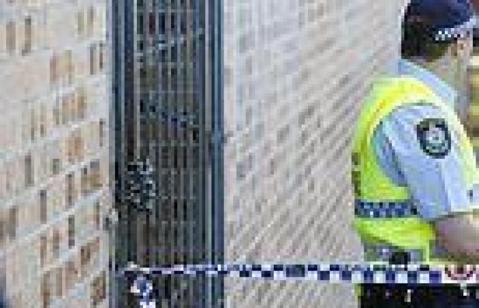 Urgent call to address Tasmania's prison problems