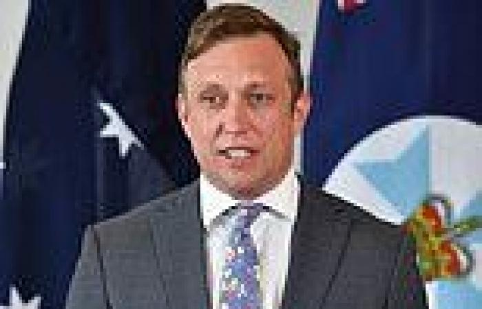 Queensland deputy premier questions why 30,000 foreigners have been allowed to ...