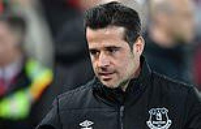 sport news Fulham appoint former Everton, Hull and Watford manager Marco Silva as their ...