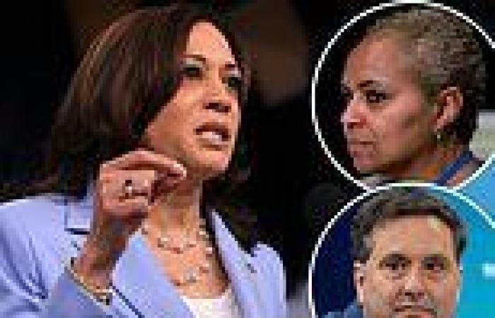 "Democrats and senior Biden officials 'fear ""heir apparent"" Kamala' could LOSE ..."
