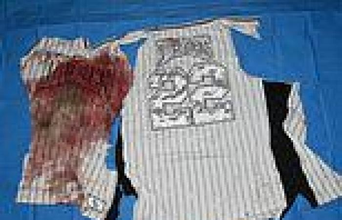 Teen who stabbed two brothers after his mates tried to steal a 76ers cap ...
