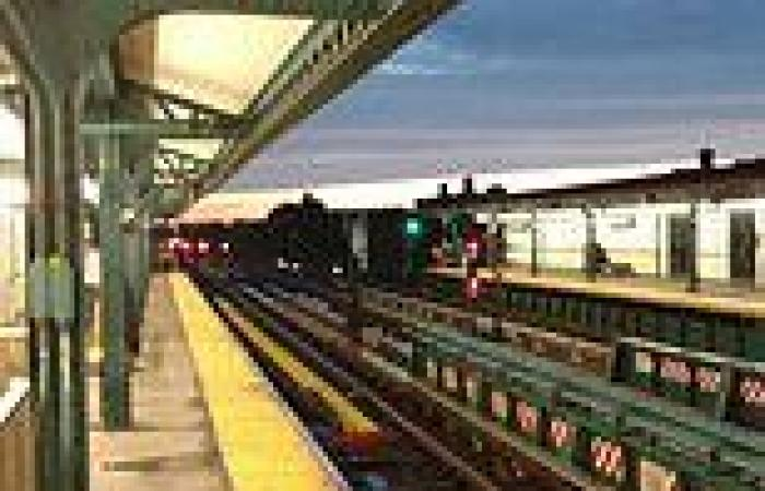 Man is decapitated by a train while sitting on the tracks at a New York subway ...