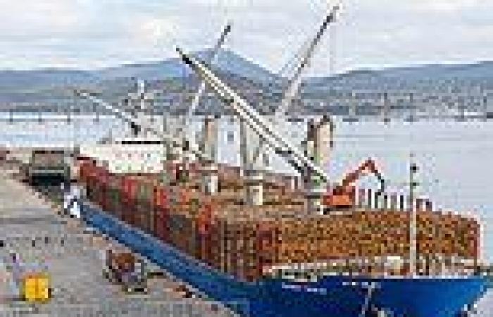 Timber shortage rocks construction industry as HomeBuilder program increases ...