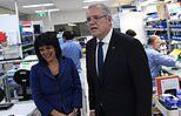 Julia Banks, former Liberal MP UNLEASHES on Scott Morrison and Canberra boys ...