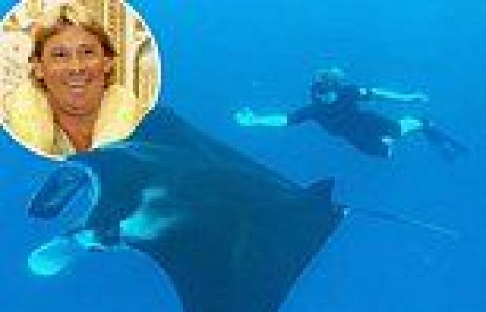 Fans tell Robert Irwin to 'be careful' as he swims with a giant manta ray