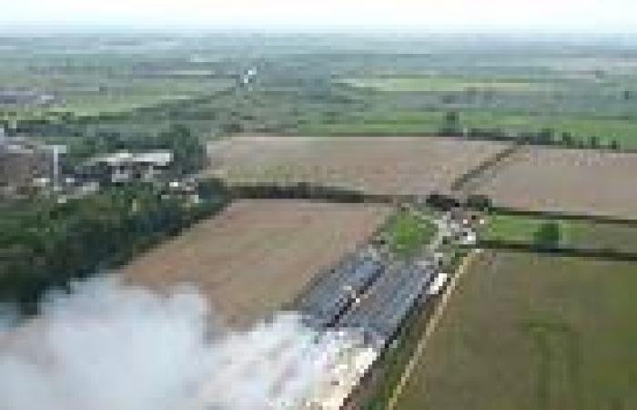 Horror as 50,000 chickens die when huge blaze tears through barns in east ...