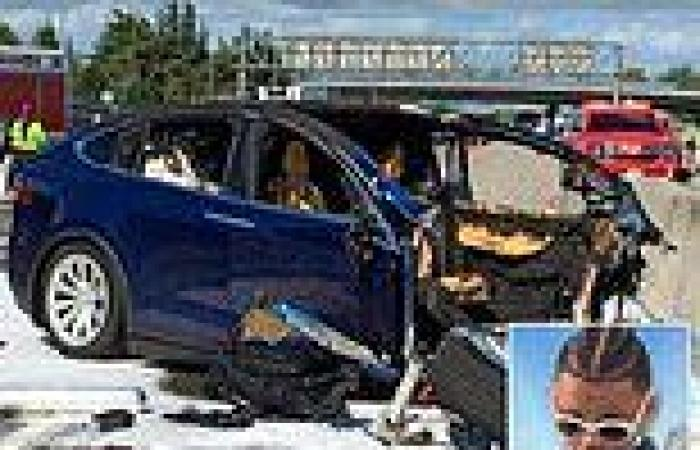 Family of boy, 15, who was killed in Tesla autopilot crash sues electric car ...