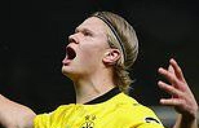 sport news 'Erling Haaland is the answer': Emmanuel Petit urges Chelsea to sign Borussia ...