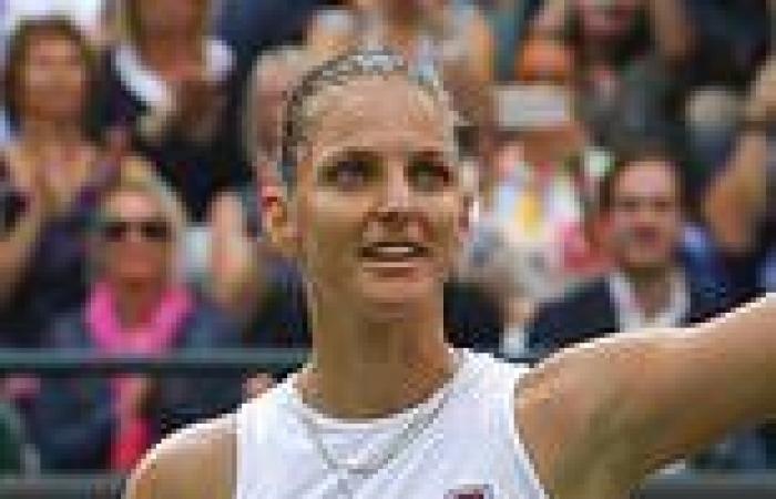 sport news Karolina Pliskova books maiden Wimbledon semi-final spot with win over ...