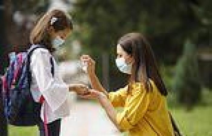 Hand sanitizer will remain in US households post-pandemic but doctors warn ...
