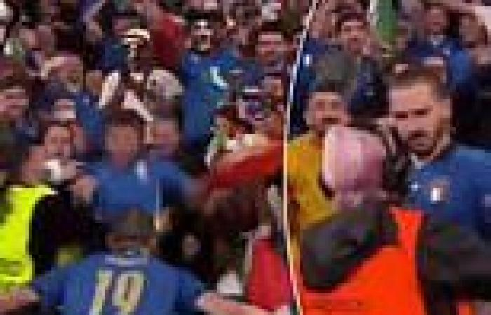 sport news EURO 2020: Bonucci blocked from returning to pitch by confused steward after ...