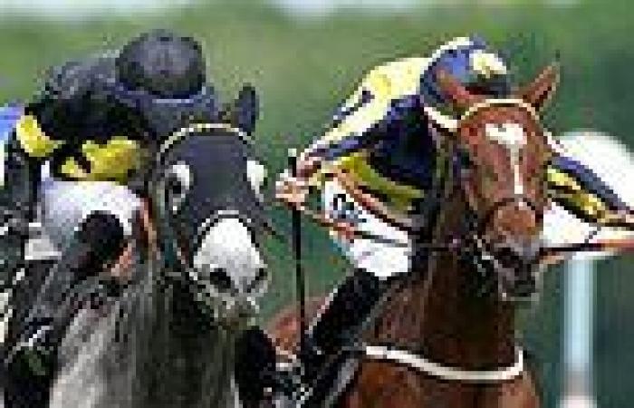 sport news Robin Goodfellow's racing tips: Best bets for Thursday, July 8