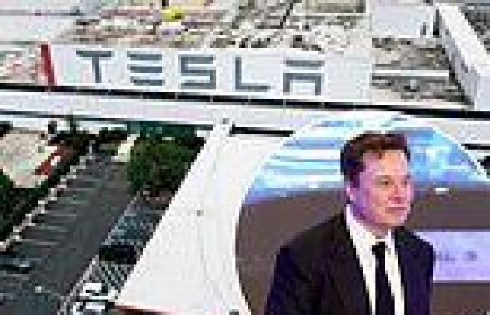 Black Tesla employee in racism claim at Fremont gigafactory