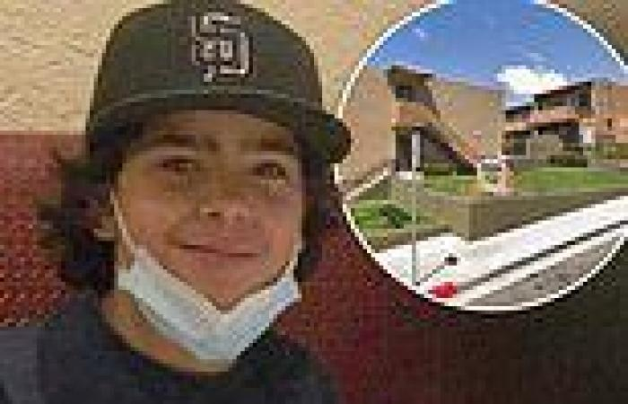 Boy, 12, accidentally shoots himself dead with a gun brought by a friend to a ...