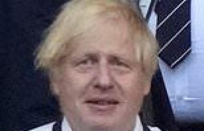 sport news Italian media claim England were given penalty to repay a favour to Boris ...