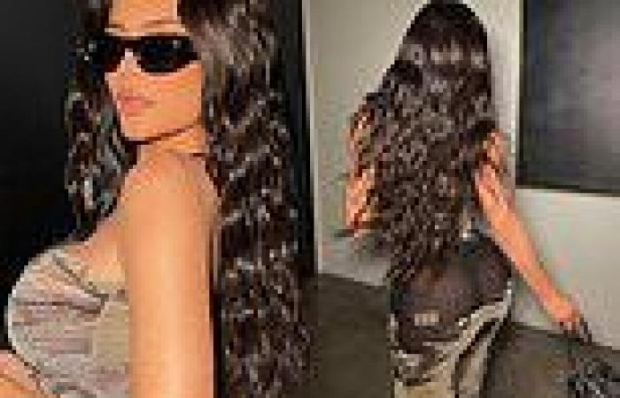 Kylie Jenner flashes her famous derriere in a racy see-through dress