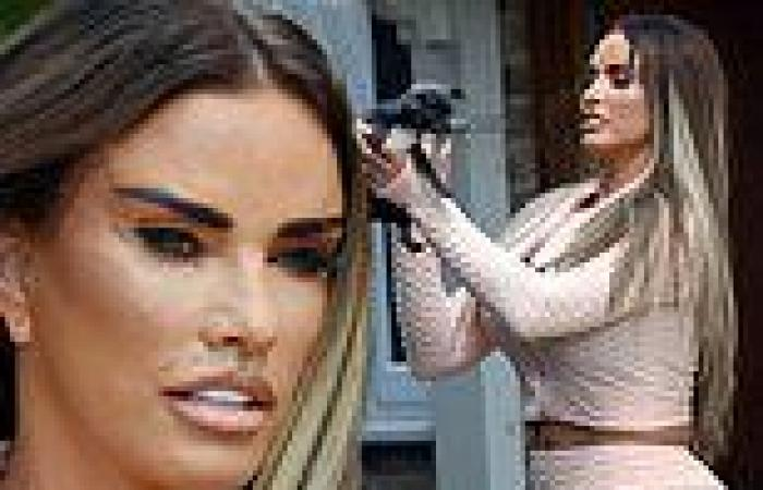 Katie Price displays the results of her latest facelift surgery and full body ...