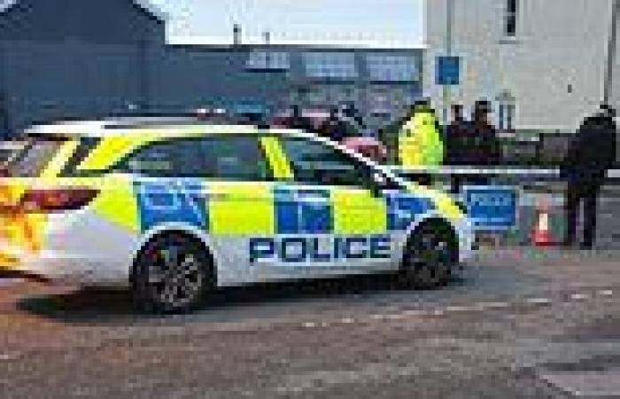 Two police officers stabbed in Devon village as man, 60, is arrested for ...