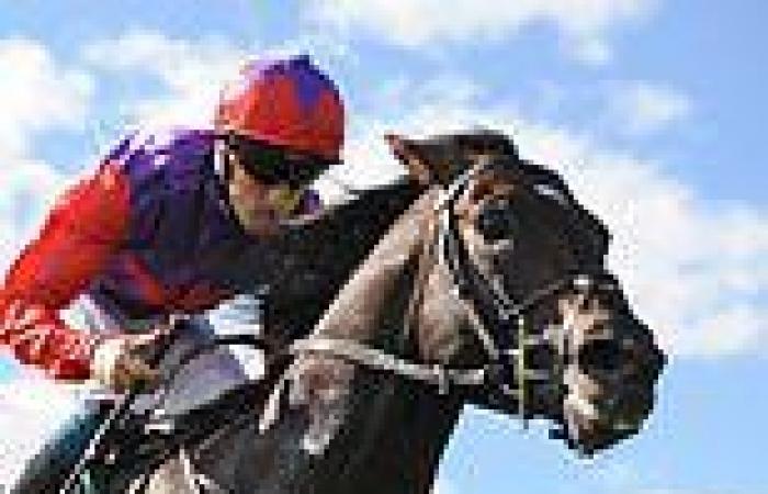 sport news Laws Of Indices lands the Haras d'Etreham Prix Jean Prat at Deauville
