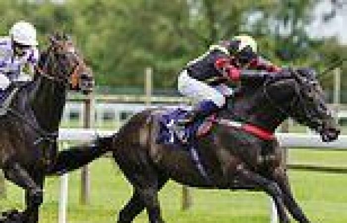 sport news Robin Goodfellow's racing tips: Best bets for Saturday, July 17