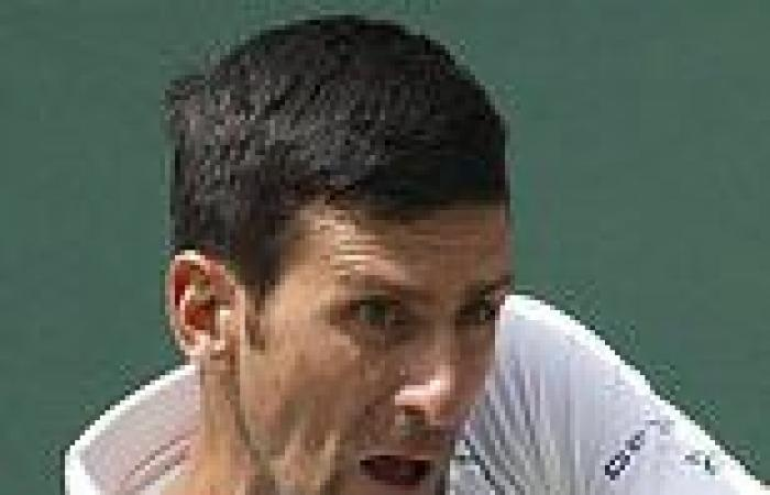 sport news Novak Djokovic confirms he WILL compete in Tokyo Games in bid to become ...