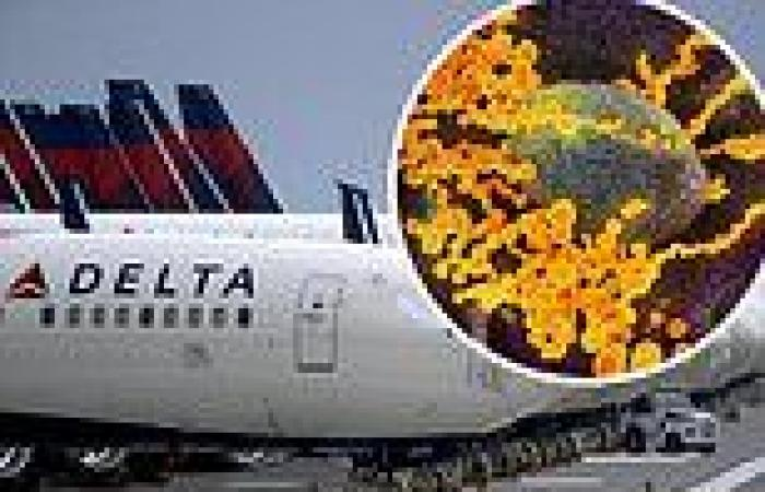 Delta Air Lines execs 'privately grumbling' about the Indian COVID-19 strain ...
