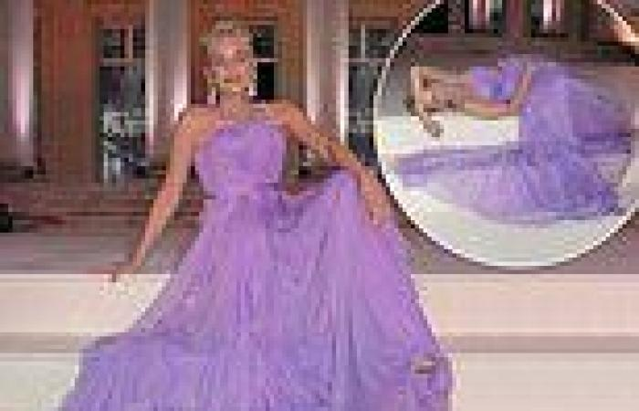 Sharon Stone steals the show in a stunning lilac gown at the amfAR Gala