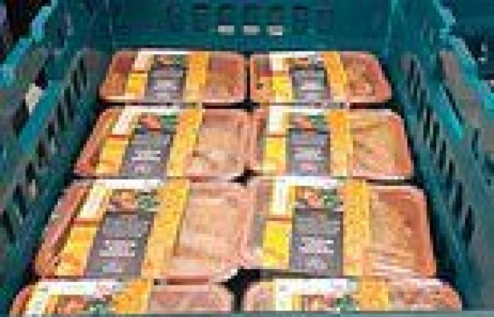 The EU food fiasco: Captured in one delivery of M&S curry to Ireland, writes ...