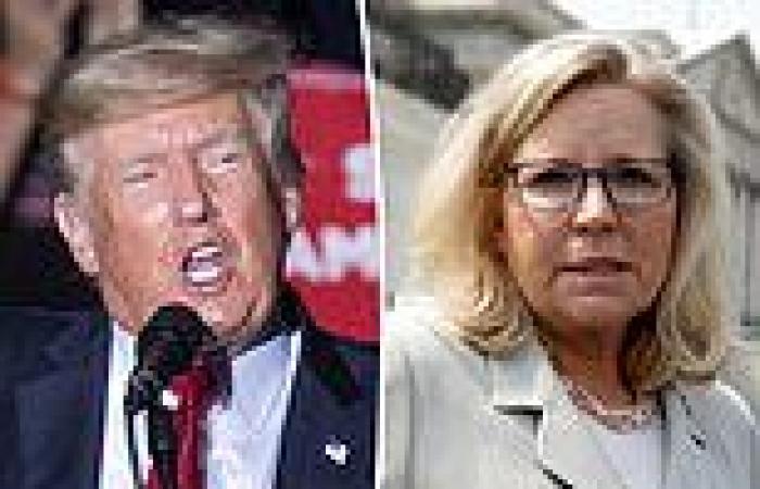 Donald Trump ramps up hunt for Liz Cheney challenger
