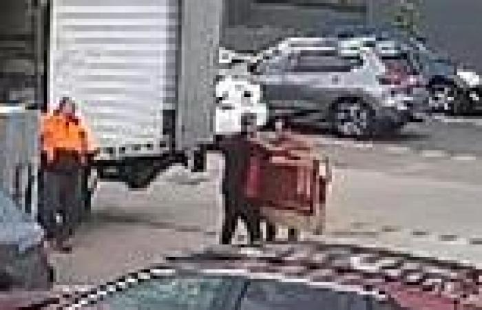 Covid-19 Australia: Police won't charge Sydney removalists who sparked ...