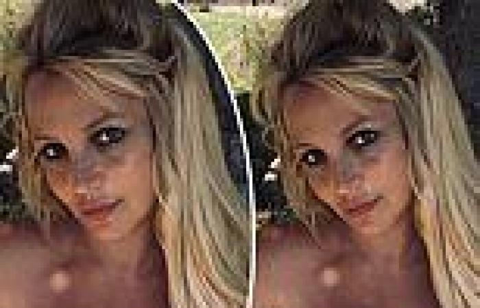 Britney Spears clutches her breasts in TOPLESS snap amid sordid conservatorship ...