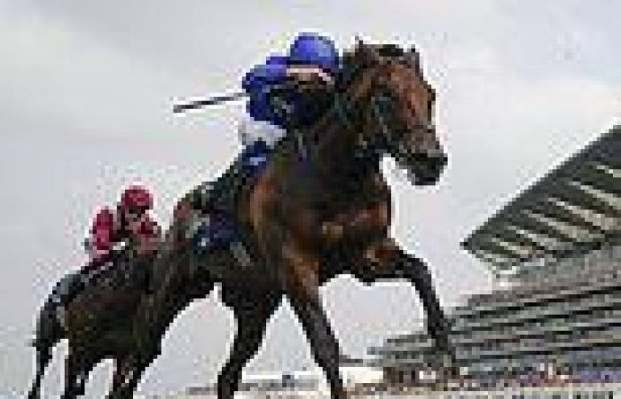 sport news Adayar will be stronger next year, claims trainerCharlie Appleby after Ascot ...