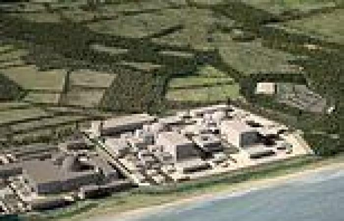 Ministers eye plan to BUY a stake in Sizewell C over security fears about ...