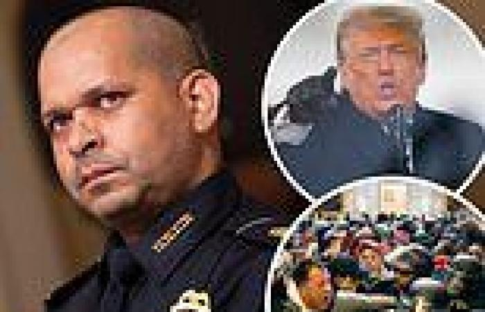 Capitol cop tells Liz Cheney that Trump is 'pathetic' for saying Jan. 6 was ...