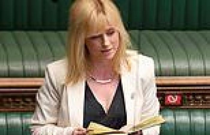 Labour MP Rosie Duffield is investigated by her party for liking tweet
