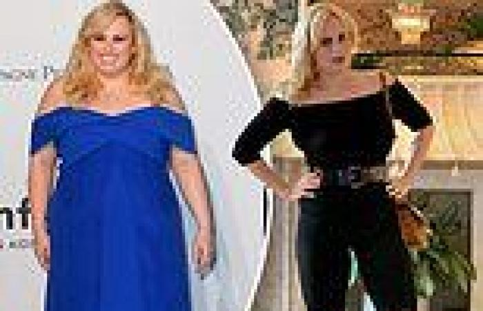 Rebel Wilson, 41, was motivated to lose  65lbs after her doctor says it would ...