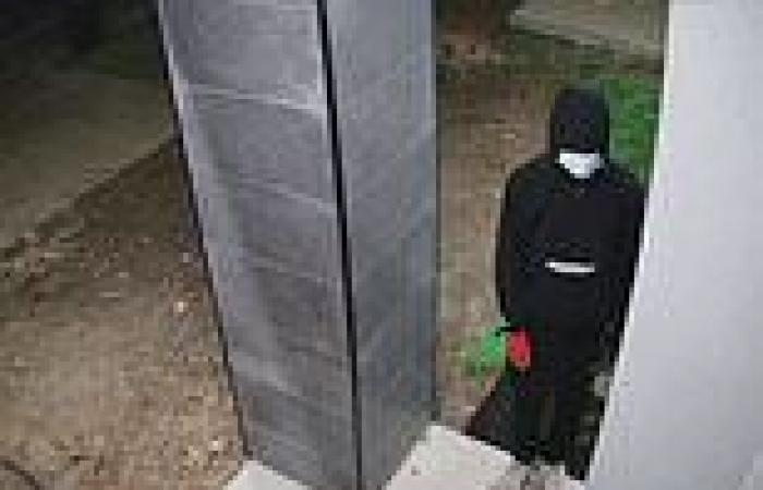 Terrifying moment masked men surround a family home in Tarneit, Melbourne