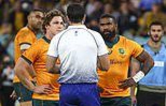 sport news British and Irish Lions launch charm offensive on second Test referee Brian ...