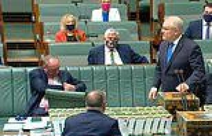 Frantic moment Barnaby Joyce scrambles to put on his mask in Parliament