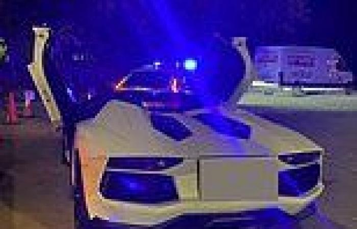 Owner of £400,000 Lamborghini Aventador 'walks home in tears' when police ...