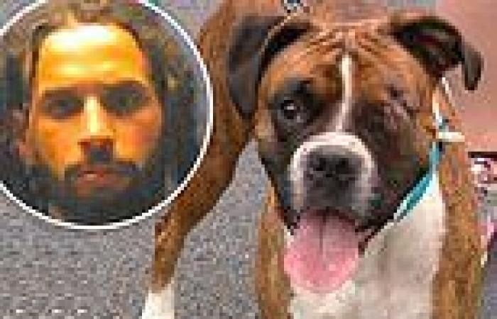 Ohio man 'called 911 to say his dog had shot itself in face - then admitted he ...