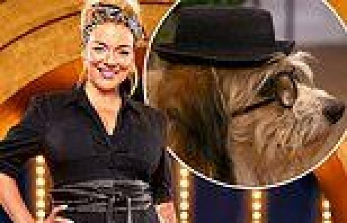 Sheridan Smith's BBC show Pooch Perfect is axed after just one series