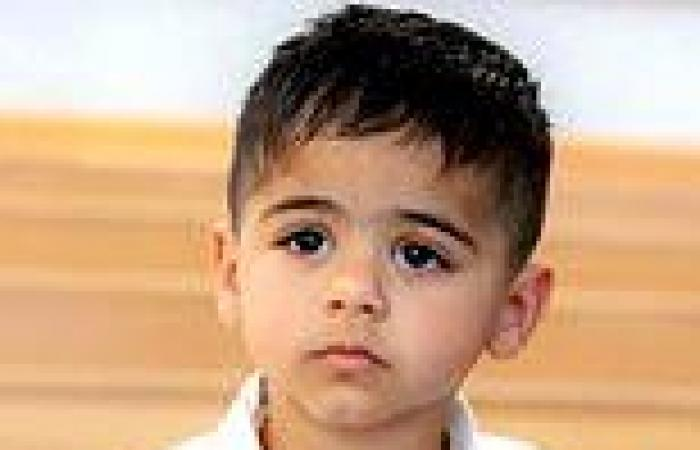 Police probe whether missing NSW toddler AJ, 3, was kidnapped before being ...