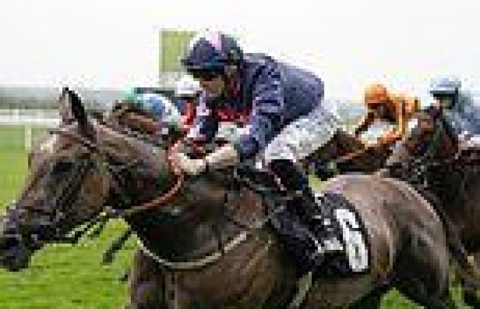 sport news Robin Goodfellow's racing tips: Best bets for Wednesday, September 8