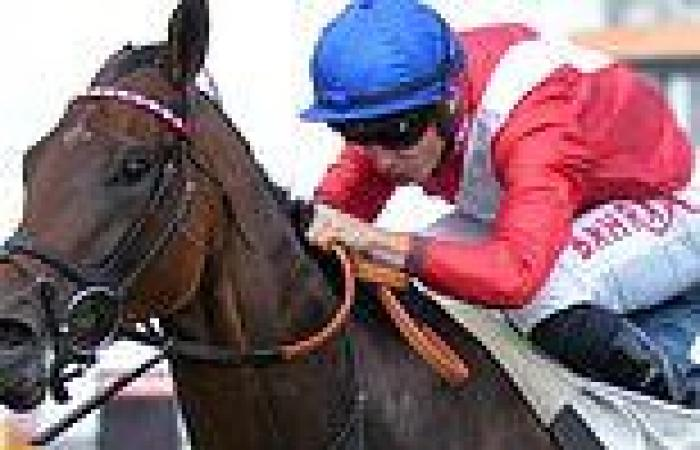 sport news Robin Goodfellow's Racing Tips: Best bets for Saturday, September 11