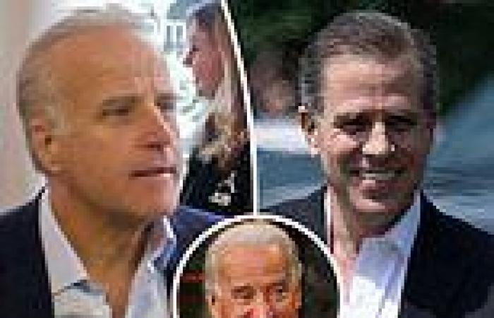 Joe Biden's son Hunter and younger brother 'used family name to win investors' ...
