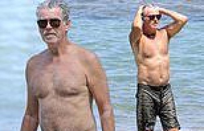 Pierce Brosnan, 68, goes shirtless while enjoying a beach day in Hawaii