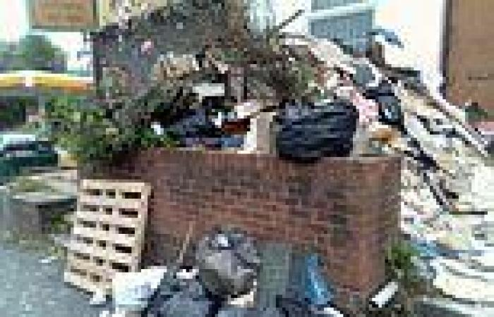 Birmingham homeowner, 63, is 'unable to get in his house' due to 8ft-high pile ...