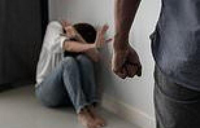 Violence against women should be treated as seriously as TERRORISM, watchdog ...